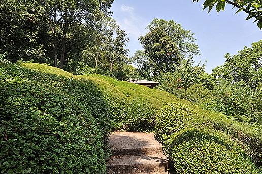 Giardini giapponesi l 39 orto botanico roma - Giardini giapponesi ...