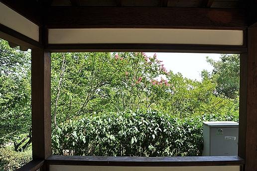Giardini giapponesi l orto botanico roma