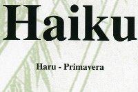 haiku17